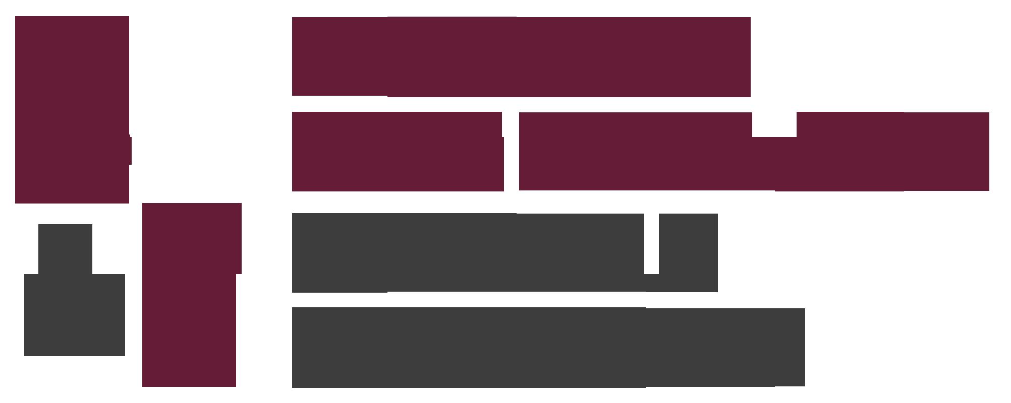 Birgit Felden